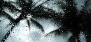 soflo rain