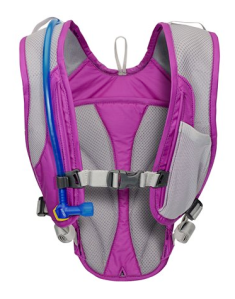 new CamelBak Dart - back