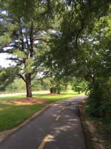 Mount Vernon Trail