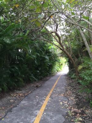 run path